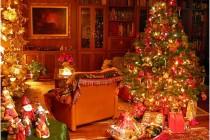 Srećna vam Nova Godina