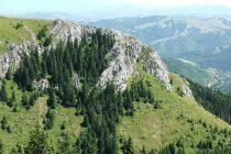 Nove cene ulaska u Nacionalni park Kopaonik